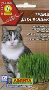 семена травы для кошек