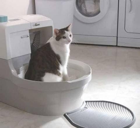 Автоматическтий туалет для кошек