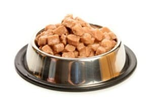 Влажные корма для кошек: обзор марок