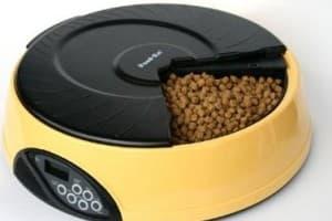 Автоматическая кормушка для кошек