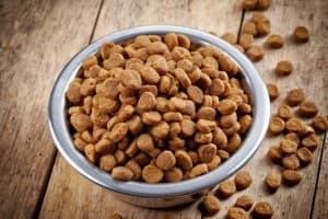 Лучшие сухие корма для кошек: рейтинг