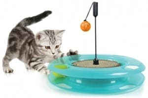 Игрушки для кошек: развлекаем любимца