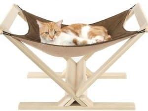 котик лежит в гамаке
