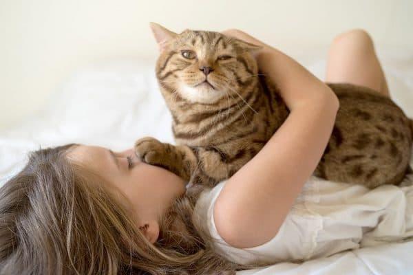 Люди которые любят кошек
