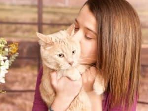 Где может заразиться глистами кошка