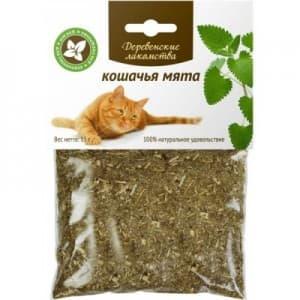 Польза применения кошачьей мяты