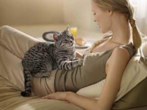 девушка и котик