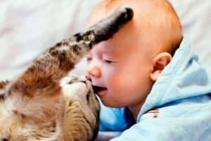 котик и ребеночек