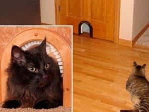 лаз для кота с ворсом