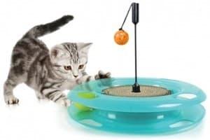 котик играется с игрушкой