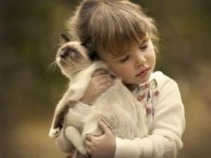 ребенок обнимает котика