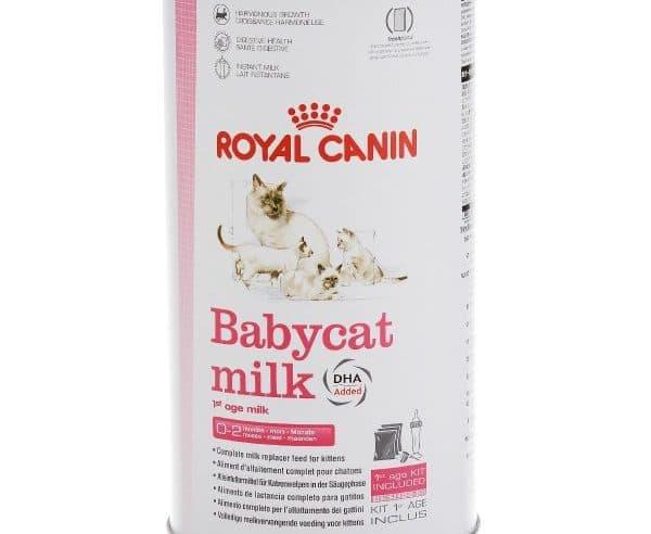 Babycat milk (Роял Канин)
