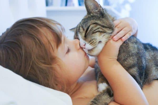 Лишай у кошек. Народные средства