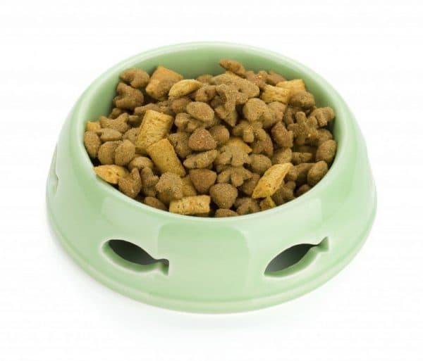 Лучшие готовые (промышленные) рационы для персидской кошки