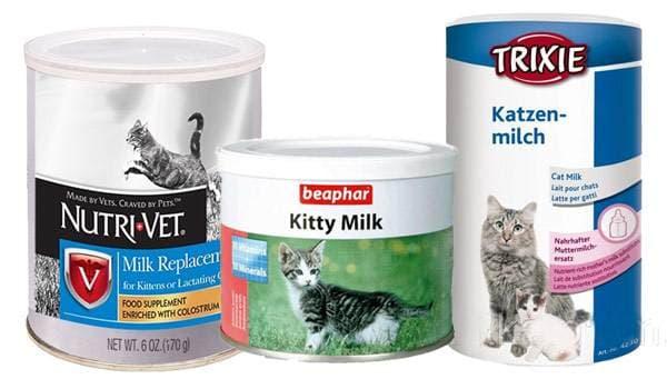 Заменители кошачьего молока состав