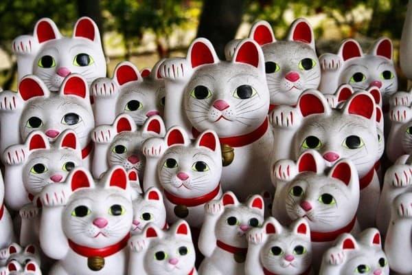 Всемирный день кошек в Японии