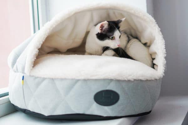 Лежак для кошки домик